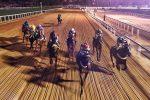 Sepuluh Kuda Berlomba Di Atas Tanah